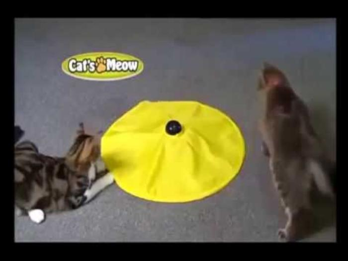 Undercover mouse electronic cat toy as seen on tv